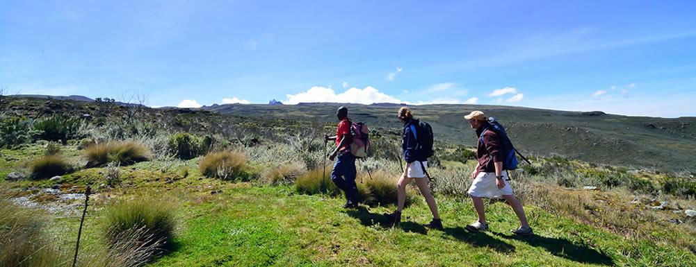 hiking-safaris