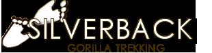 Silverback gorilla tour